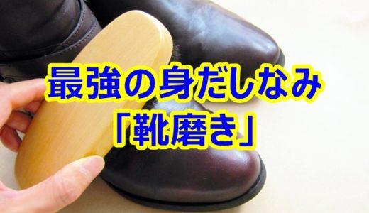 サラリーマン向けに「靴の磨き方」を教えます【簡単・初心者用】